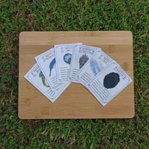 Item Card Pack 1 (contains 6 magic items)